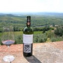 Wine Tasting at Brolio Castle in Tuscany