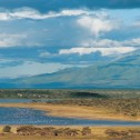 Lake Ndutu, with Lemagrut Mountain behind